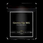 growzupbig(グロウアップビッグ)